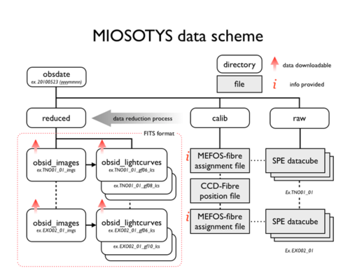 Diagramme miosotys